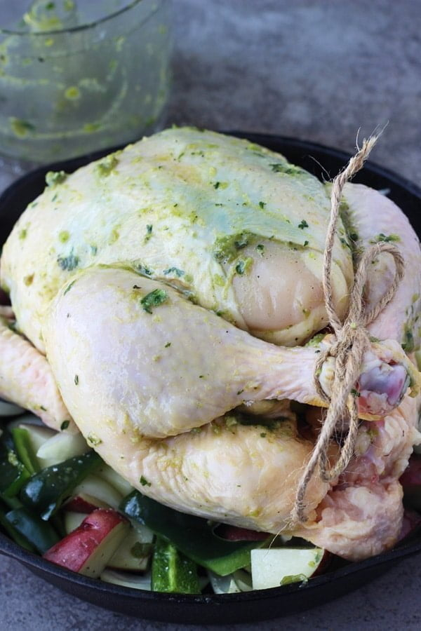 Poblano and Cilantro Roast Chicken 7