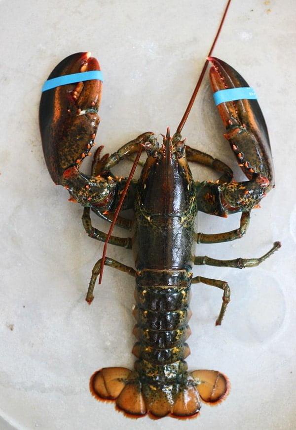 Lobster Spaghetti (Santorini Style)