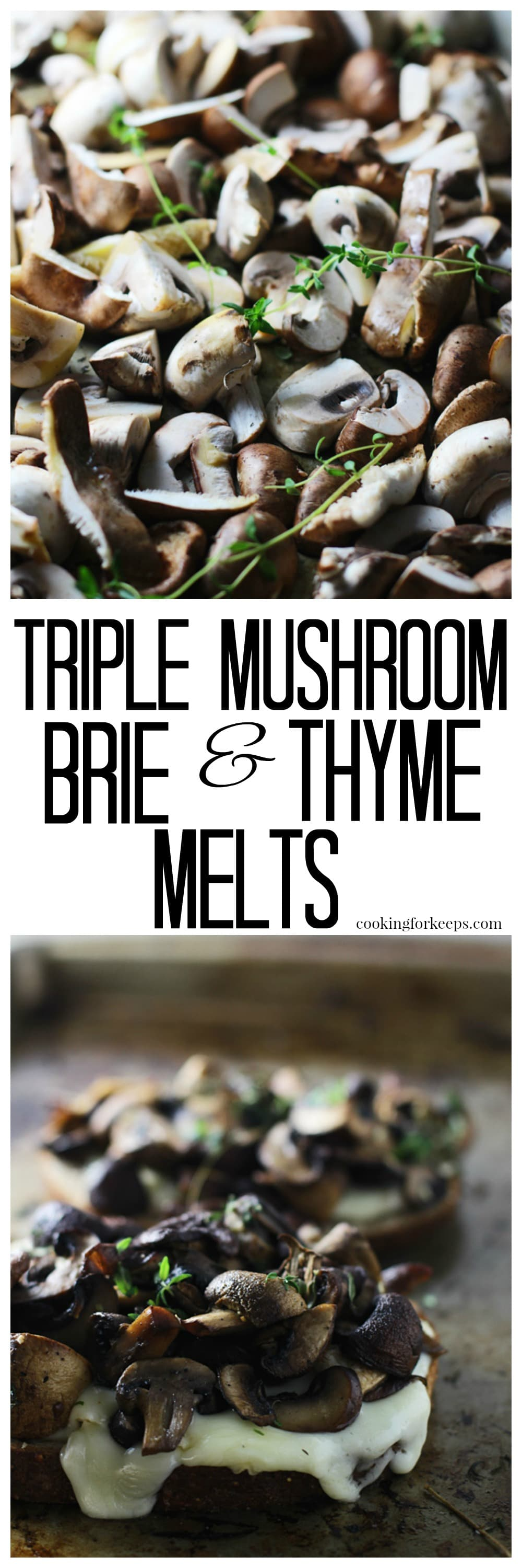 Triple Mushroom and Brie Melts - The perfect grilled cheese for all you mushrooms lovers out there!